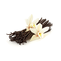 jekstrakt vanili - Активные элементы